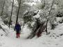 El Carche nevado 10-01-2021