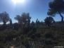 Senderismo, Barbudo Trail, tramo nuevo